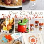 20+ Fabulous Must Try Fall Ideas