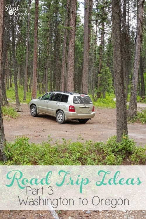 This Family Road Trip is great! It shows things to do for the kids and the whole family primarily in the Seattle/Tacoma and Portland Areas. Need to use some of these ideas the next time we travel.