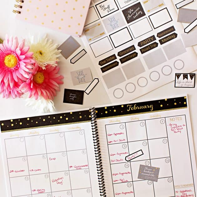 2017 Real Organized Printable Calendar