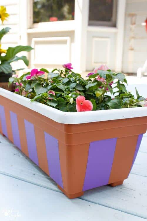 Picture of painted plastic pot with flowers
