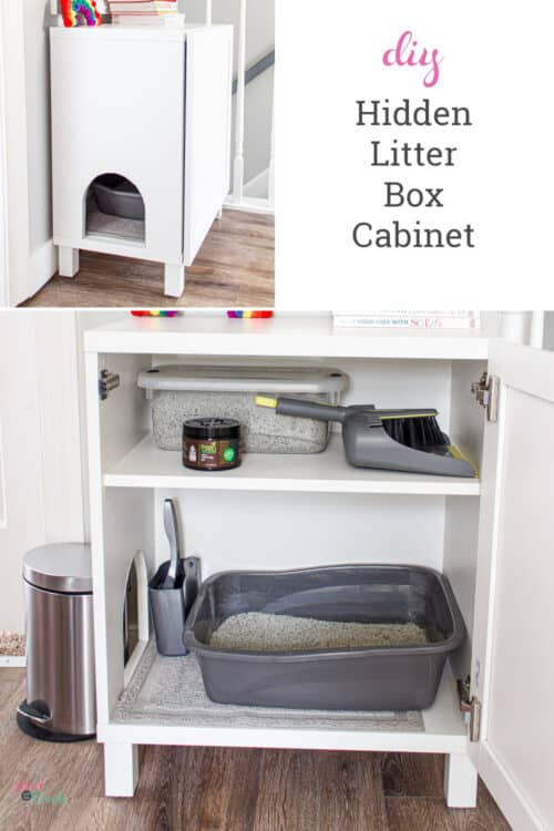 DIY hidden litter box in IKEA Besta cabinet